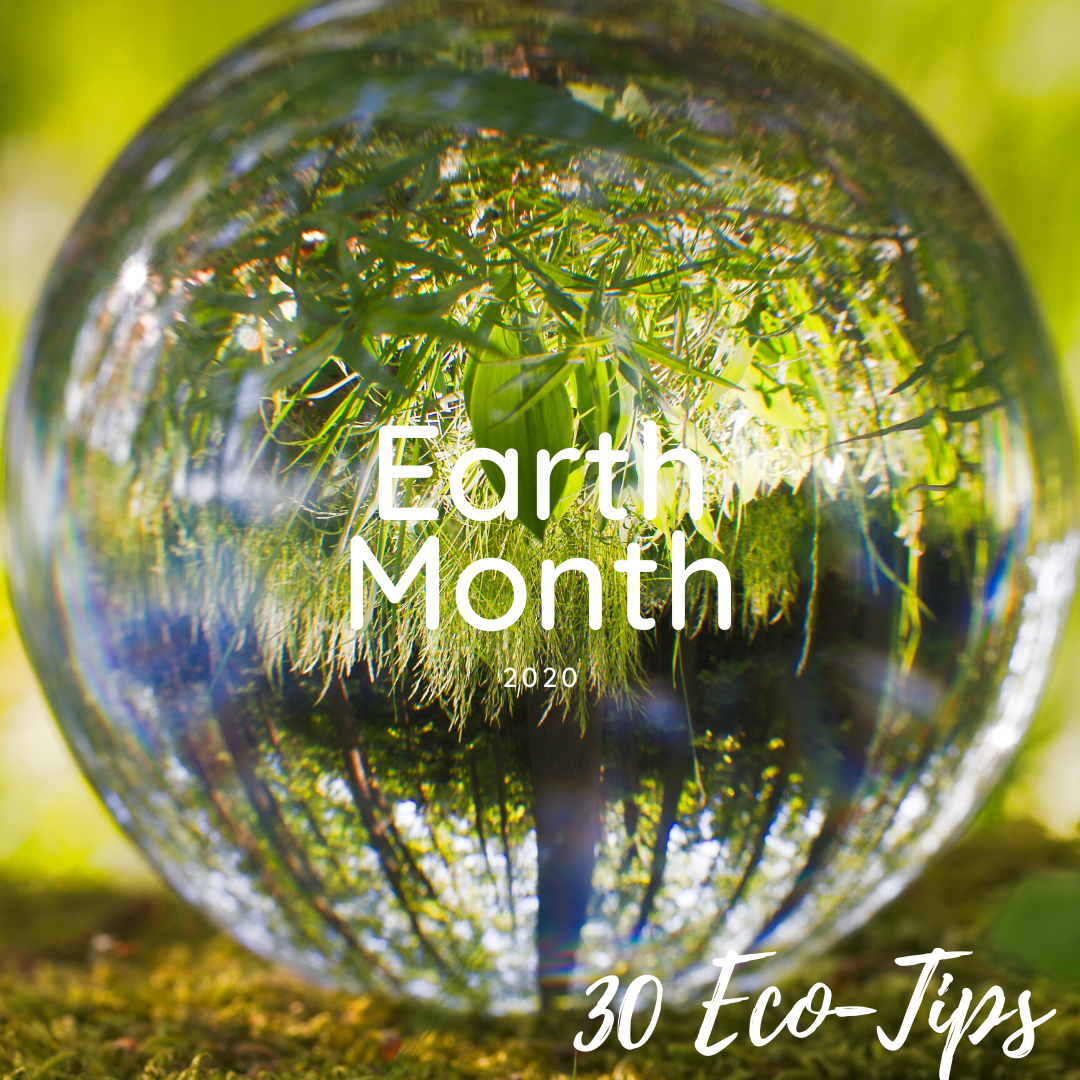 Earth Month Celebration - 30 Eco-Tips
