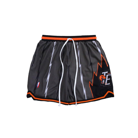 VINCE CARTER SWINGMAN SHORTS