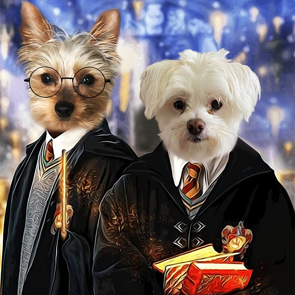 Harry Potter & Friend