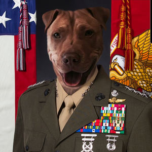 US Marine Corps General