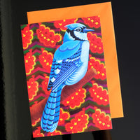'Blue Jay' card