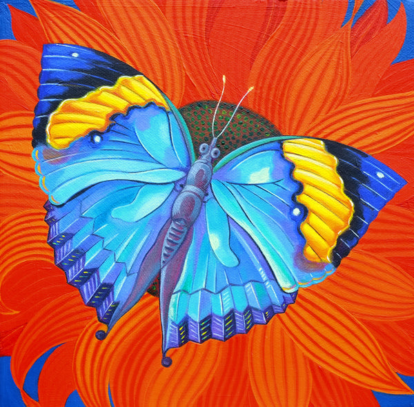 'Indian leaf butterfly' oil painting