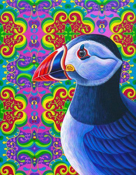 'Puffin' oil painting
