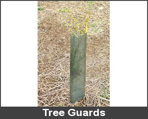 Tree_Guards_QZ3PW5AV07MV.jpg