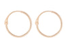 The New Sleeper gold hoop earrings