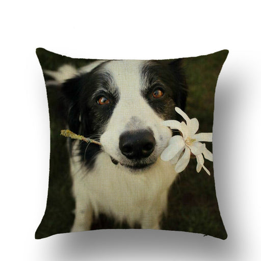 Animal Dog Painting Decorative Pillow Cushion