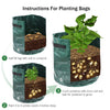 Potato Grow Bags Planting Bag Growing Sweet Potatoes In