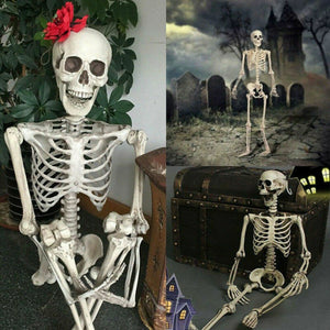 Skeleton Bones Decoration Life Size Posable