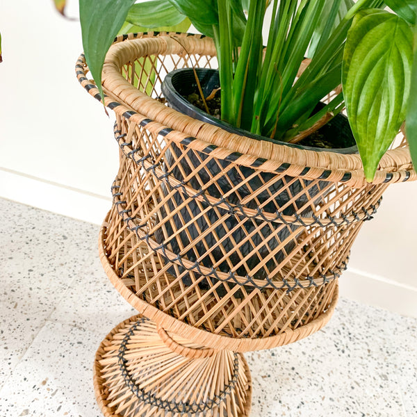 CANE PLANT STAND - HEY JUDE WORKSHOP • Vintage furniture & wares.