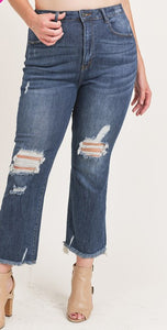 High Waisted distressed ankle straight