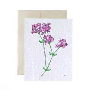Catchfly | Plantable Card