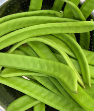 Load image into Gallery viewer, Thammakaya/ Sword Beans (Bush Variety) - 5 seeds