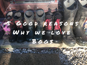 5 Good Reason Why We Love Bogs