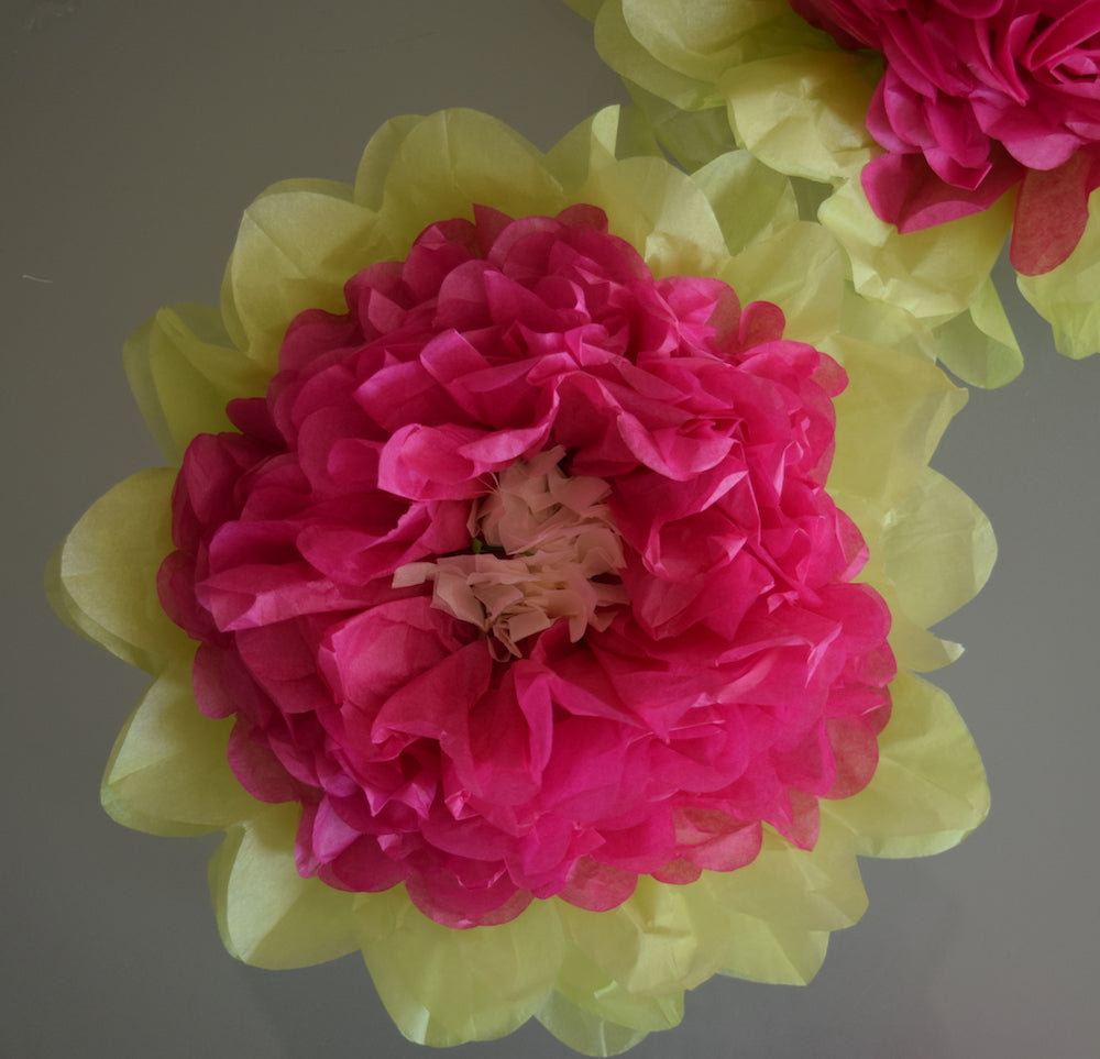 Fluffing Your Paper Tissue Flower Pom Poms