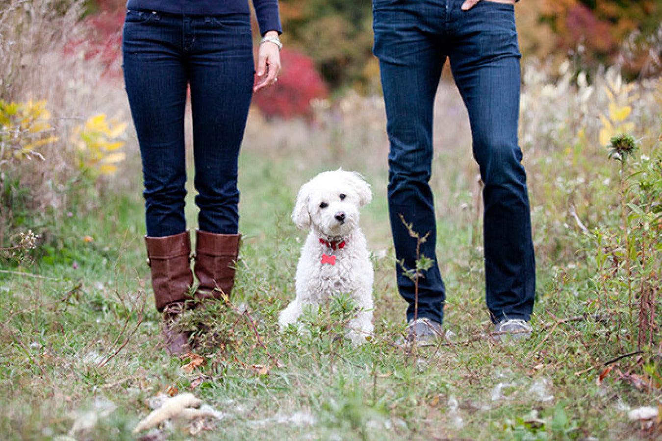 Inspiring Engagement Photos With Your Dog