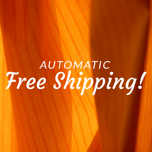 Automatic Free Ground Shipping!