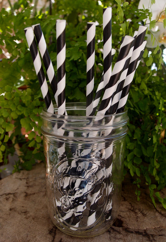 BLOWOUT Black Striped Patterned Party Paper Straws (12 PACK)