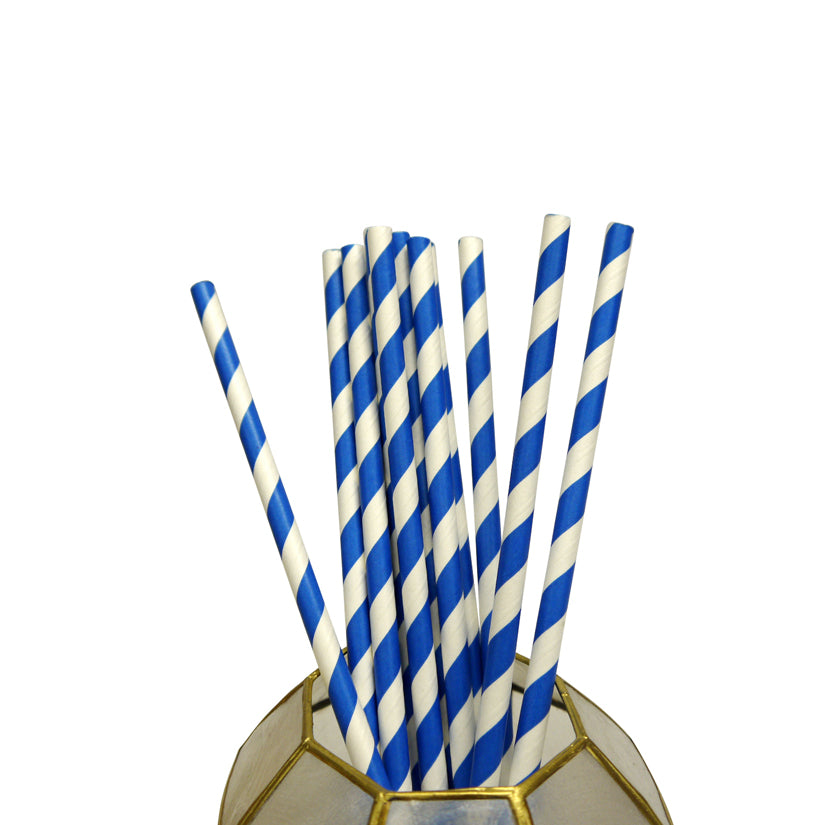 BLOWOUT Dark Blue Striped Patterned Party Paper Straws (12 PACK)