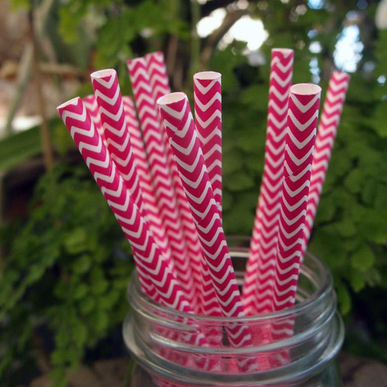 BLOWOUT Fuchsia Chevron Patterned Party Paper Straws (12 PACK)