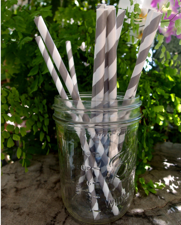 BLOWOUT Gray Striped Patterned Party Paper Straws (12 PACK)
