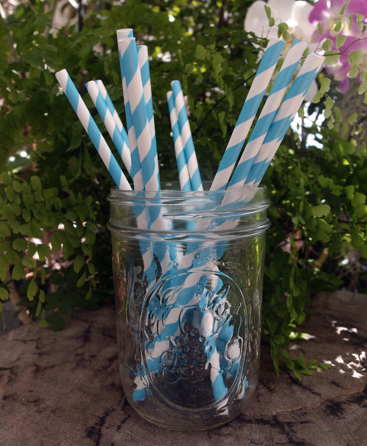 BLOWOUT Turquoise Striped Patterned Party Paper Straws (12 PACK)