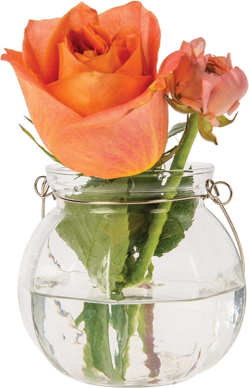 BLOWOUT Vivian Clear Hanging Mason Jar Candle Holder and Vase