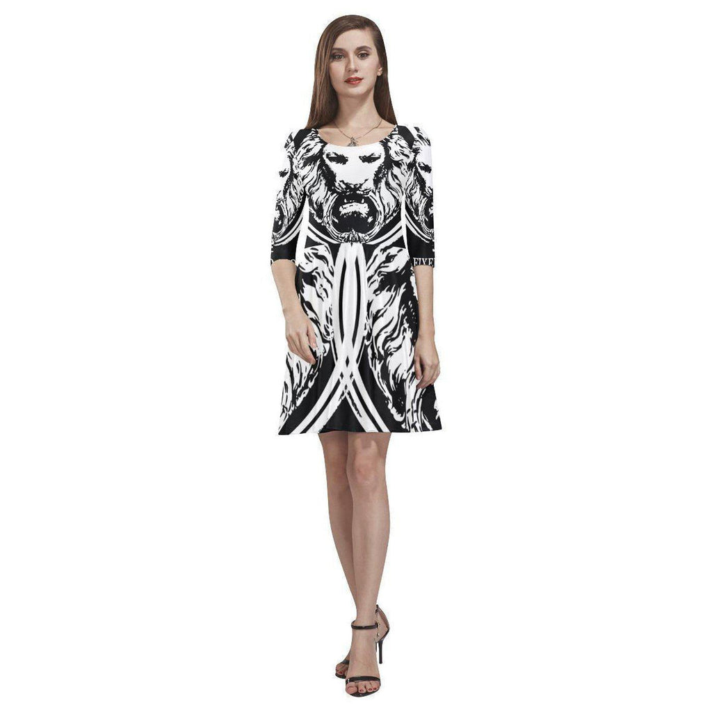 NO FIXED ABODE,Abstract Lion Womens Skater Dress,Dresses,XS