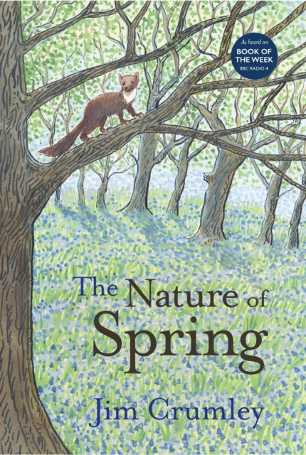 The Nature of Spring