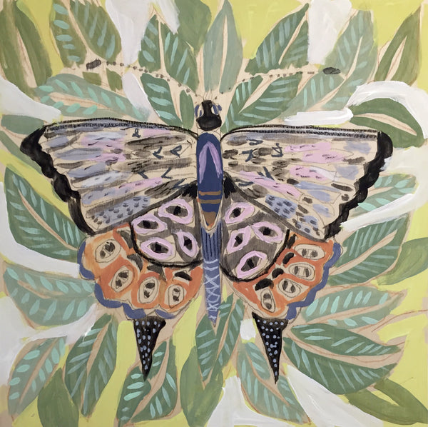 14X14 - TIBBY THE BUTTERFLY
