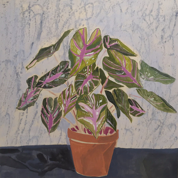 Caladiums for Charlotte - 36X36