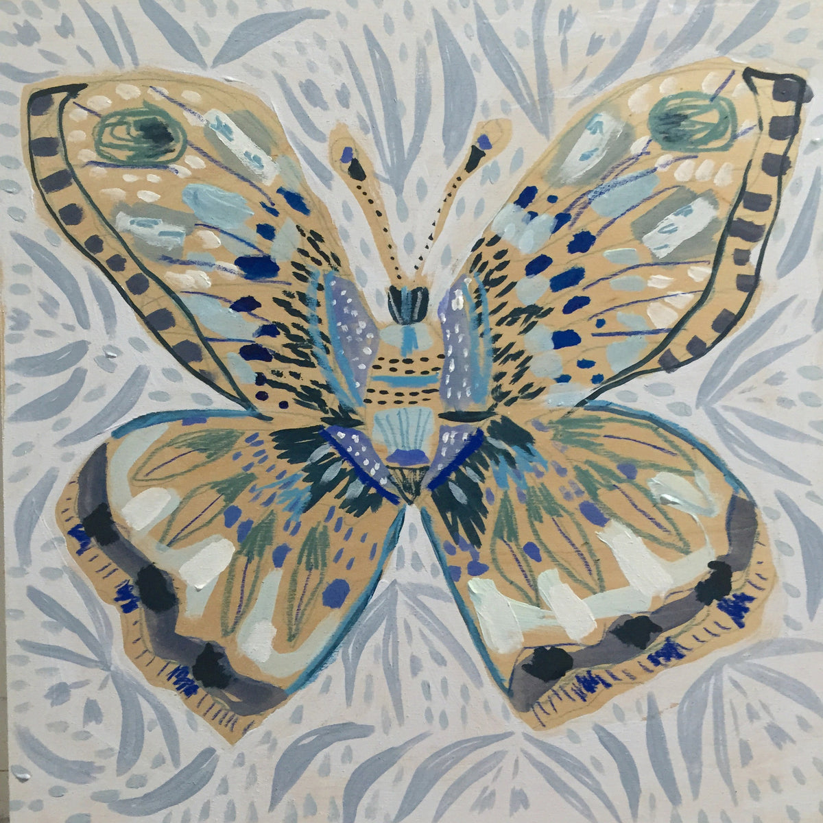 16x16 - HAYDEN THE BUTTERFLY