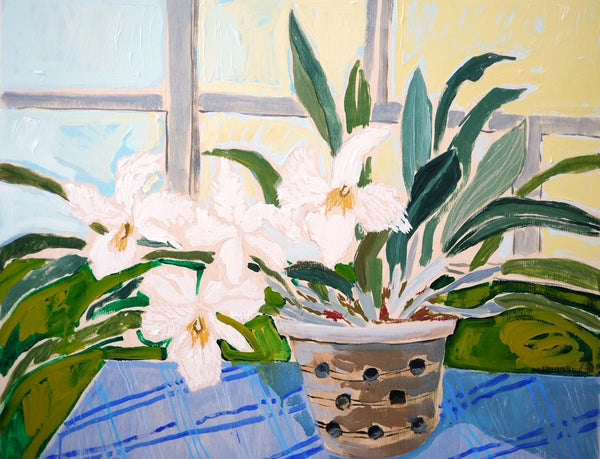Potted Orchid No. 10 - 24 x 30