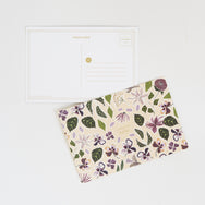 Falling Flowers Postcard Set