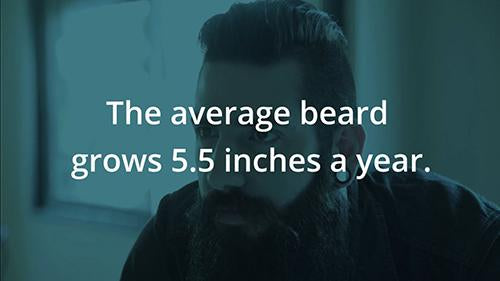 By the Numbers: Beards 1 Version 1