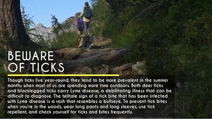 Everyday Health: Beware of Ticks