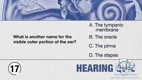 Hearing Quiz 5 Version 2