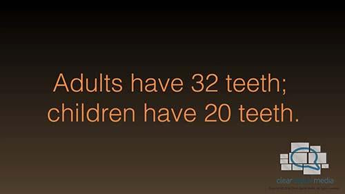 By The Numbers 14 Dental