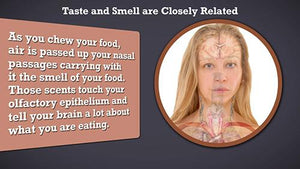 Taste and Smell are Closely Related Version 2