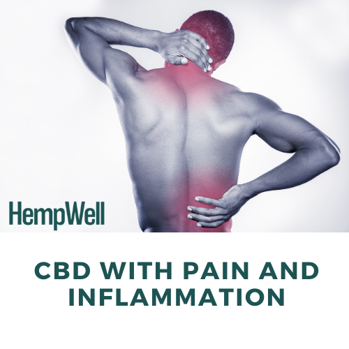 Image of a man with back pain and text 'CBD with pain and inflammation'