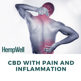 Man with sore neck and back with text 'CBD with pain and inflammation'