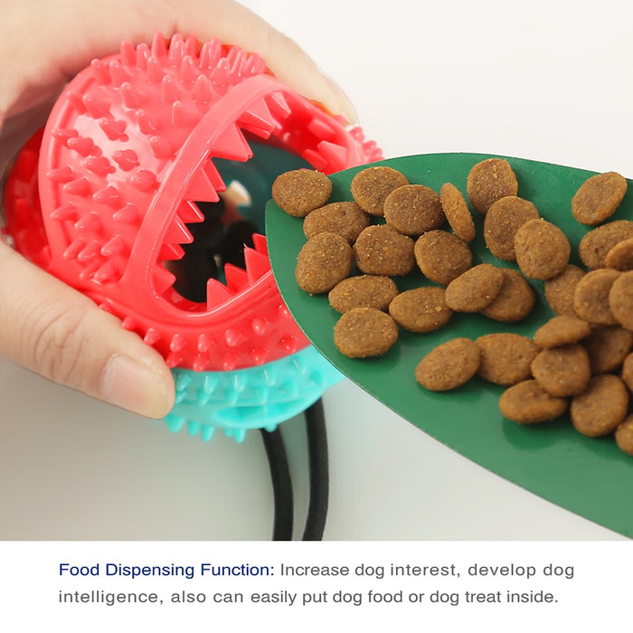 Dogs Chewing Toy