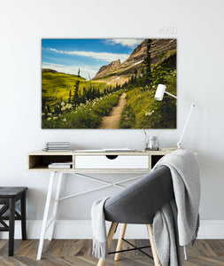 Forex Foam Print | The US National Parks: Glacier 0125 - Lemonee on the Hills