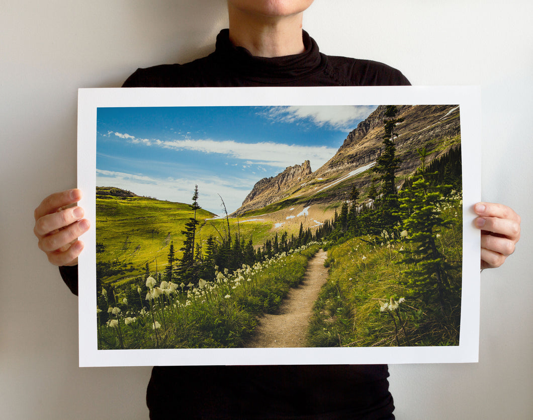 Matte Print | The US National Parks: Glacier 0125 - Lemonee on the Hills