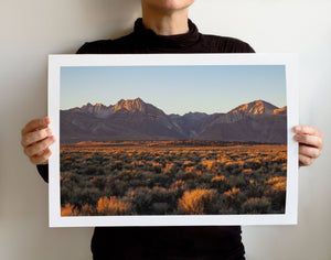 Matte Print | Les Sierras: Sierra 0433 - Lemonee on the Hills