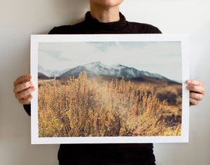 Matte Print | Les Sierras: Sierra 4730 - Lemonee on the Hills