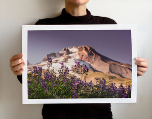 Matte Print | The Pacific Northwest: Mt Hood 9109 - Lemonee on the Hills