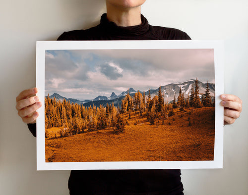 Matte Print | The US National Parks: Rainier 0307 - Lemonee on the Hills