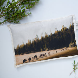 Microwavable Stress Relief Pillow | The US National Parks: Grand Canyon 1919