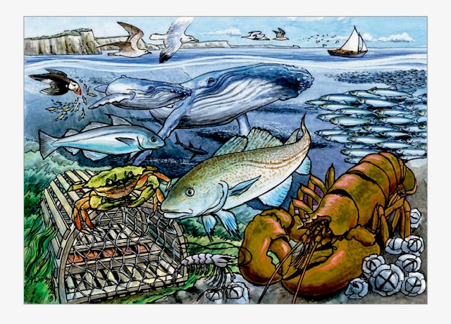 Life in the Atlantic Ocean Tray Puzzle