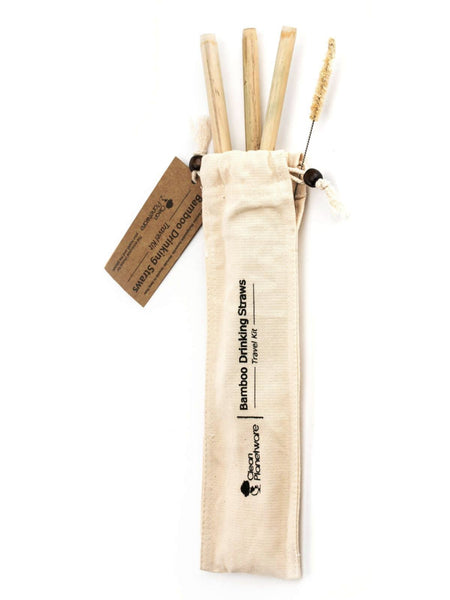 Bamboo Straw Travel Kit with 3 straws and an agave cleaning brush